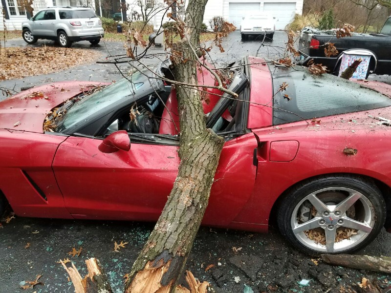 Oak Tree Branch Falls Through Man's 2005 Corvette in Ohio
