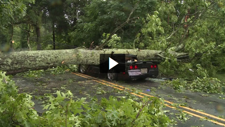 North Carolina Corvette Owner is Lucky to be Alive After Trees Crushes Corvette